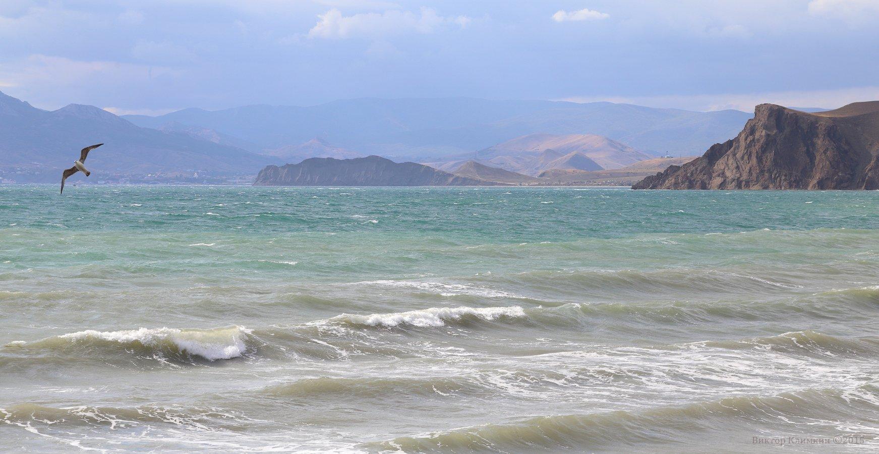 волны, горы, коктебель, крым, море, провато, чайка, черное море, Виктор Климкин