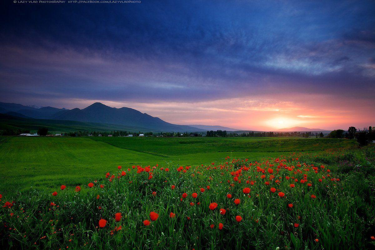 киргизия, ала-тоо, горы, май, lazy_vlad, lazyvladphoto, landscape, kyrgyzstan, Lazy Vlad