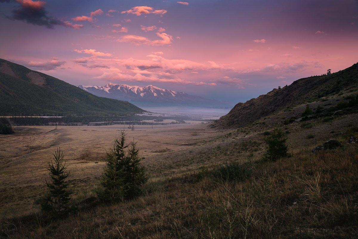 Алтай, Большой, Вершины, Горы, Горыстепь, Красивый, пейзаж, природа, рассвет, розовый, утро, Холодный, Хребет, Дмитрий Антипов