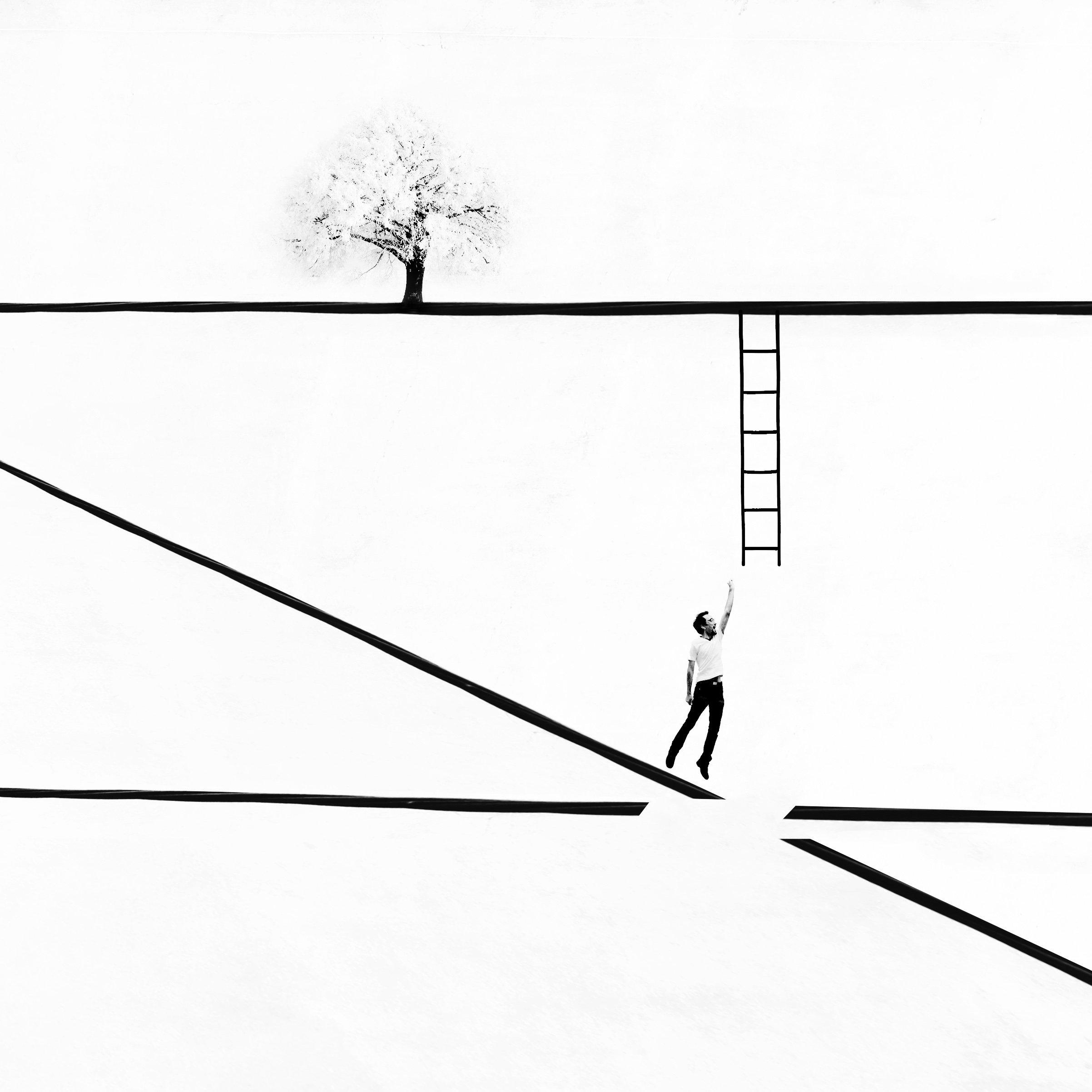 conceptual, fine art, tree, ladder, minimal, photography, lines, milad safabakhsh