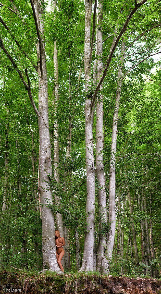 Forest, Nude, Portrait, Woods, Akira Enzeru