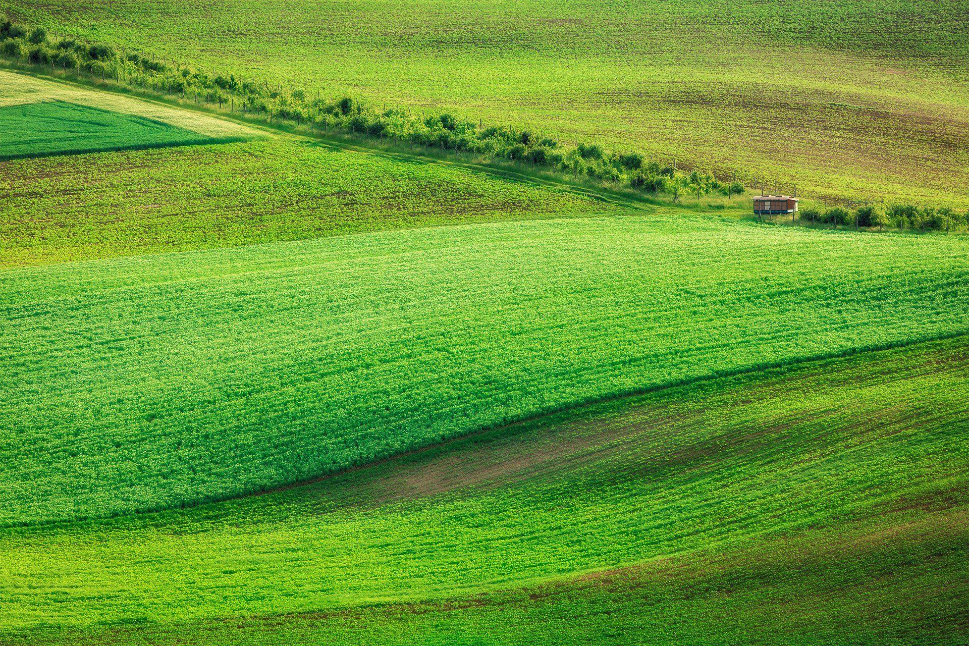 Моравия, пейзаж, Чехия, Дмитрий Рухленко