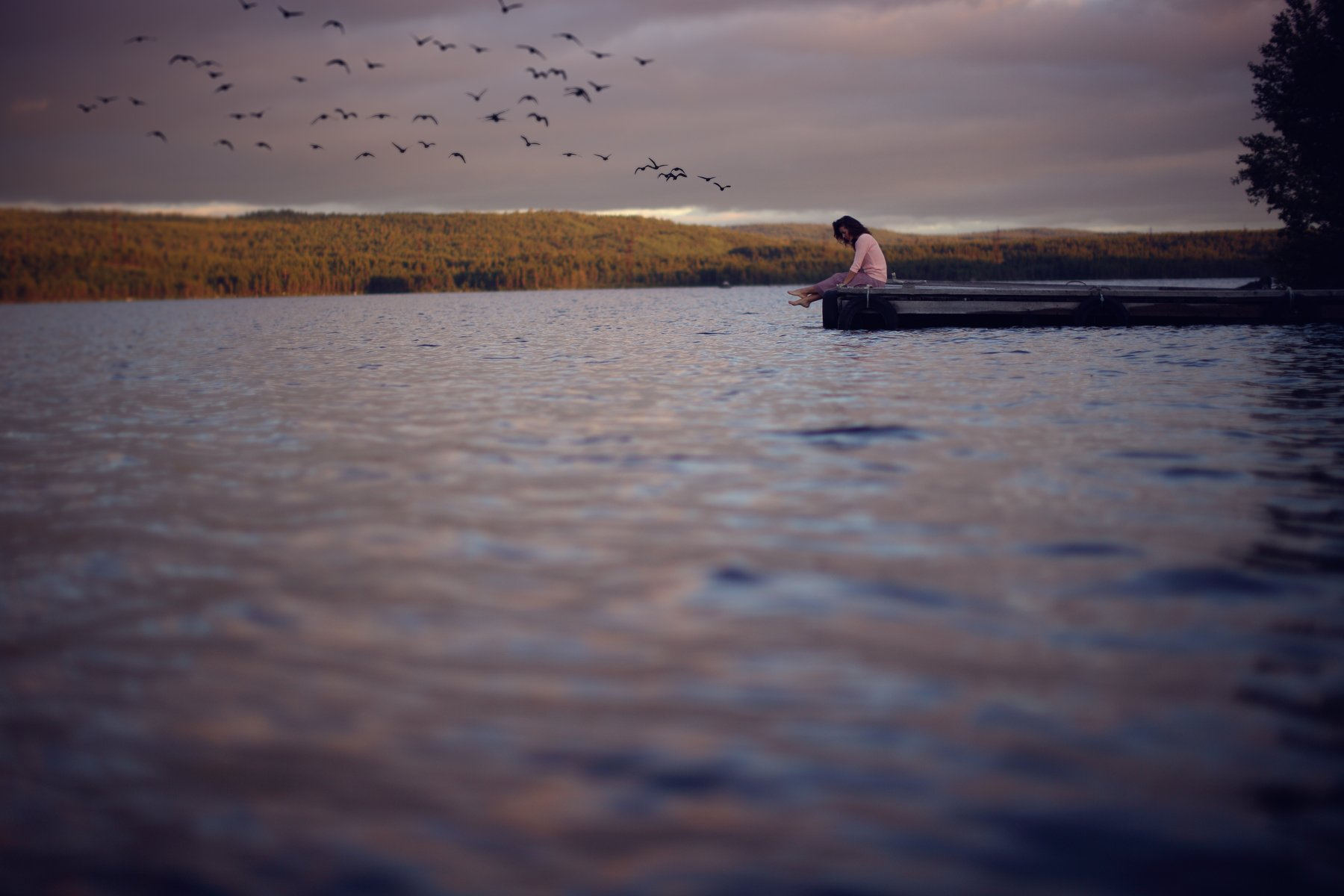beach beautiful birds boat clouds dream girl lake light nature ocean pier river sky sunset water wave, Анна Луценко