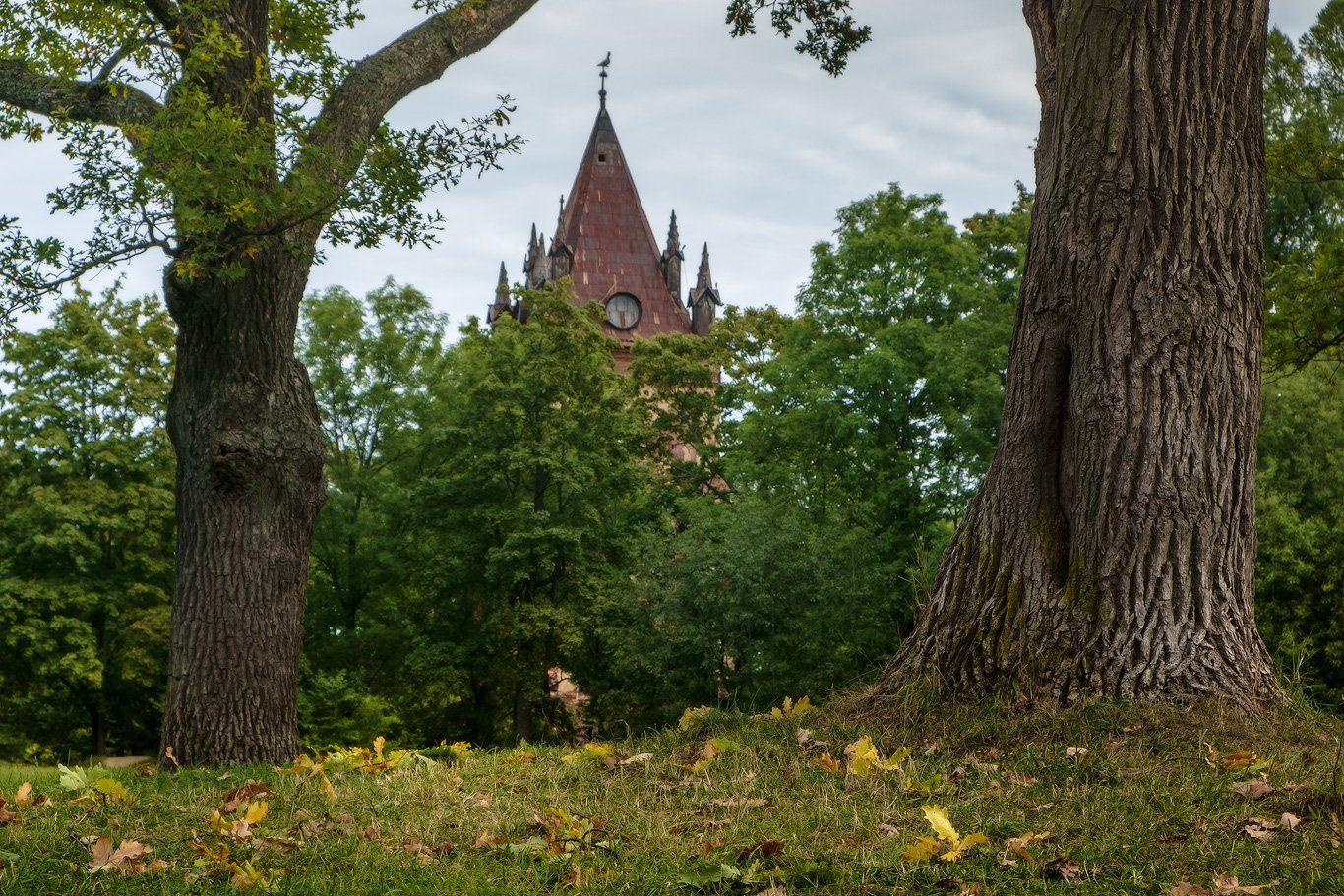 пушкин, царское, село, осень, александровский, екатерининский, парк, Илья Штром