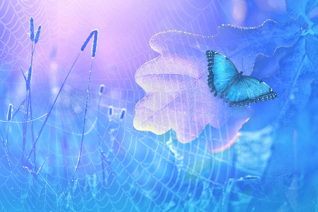 голубая бабочка, дубовый лист, трава, Nataliorion