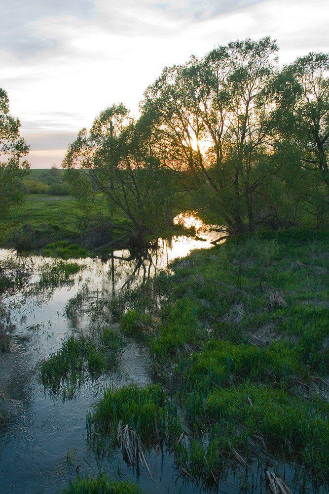 река, брынь, гольча, закат, солнце в реке, Александр