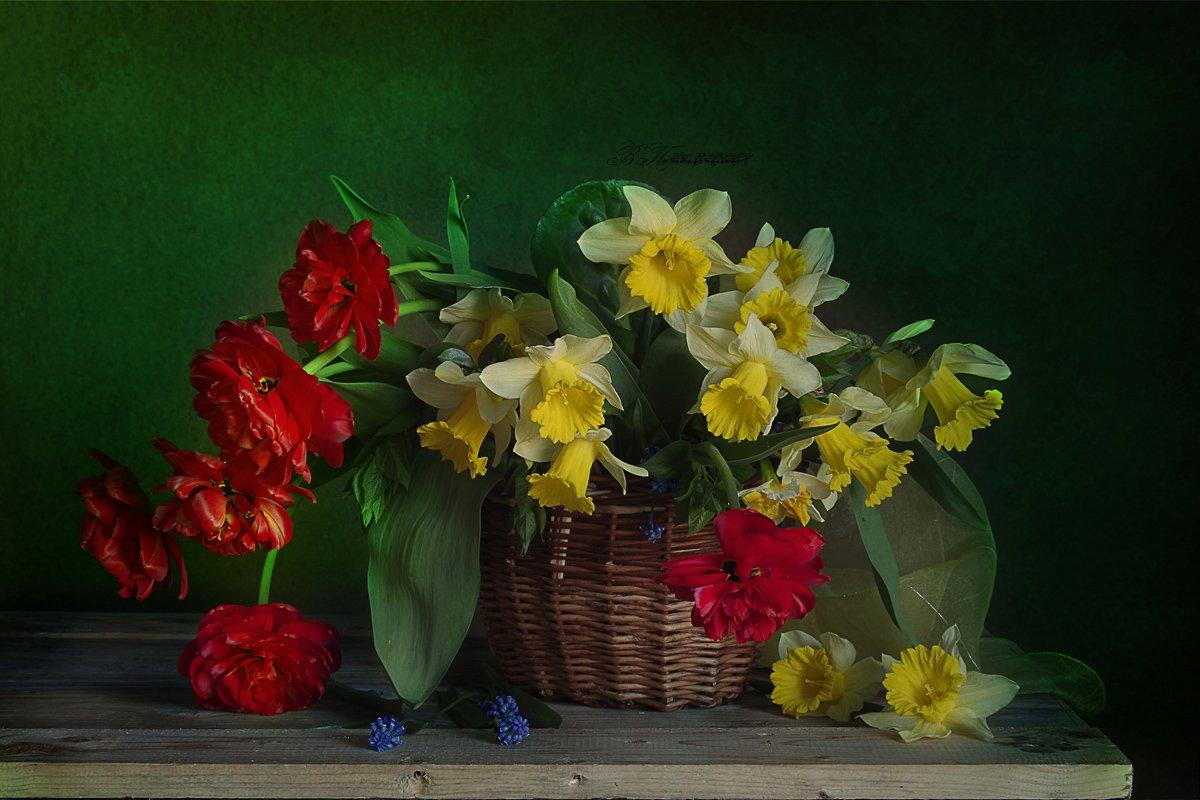 Весенние цветы, Нарциссы, Натюрморт с цветами, Тюльпаны, Вера Павлухина