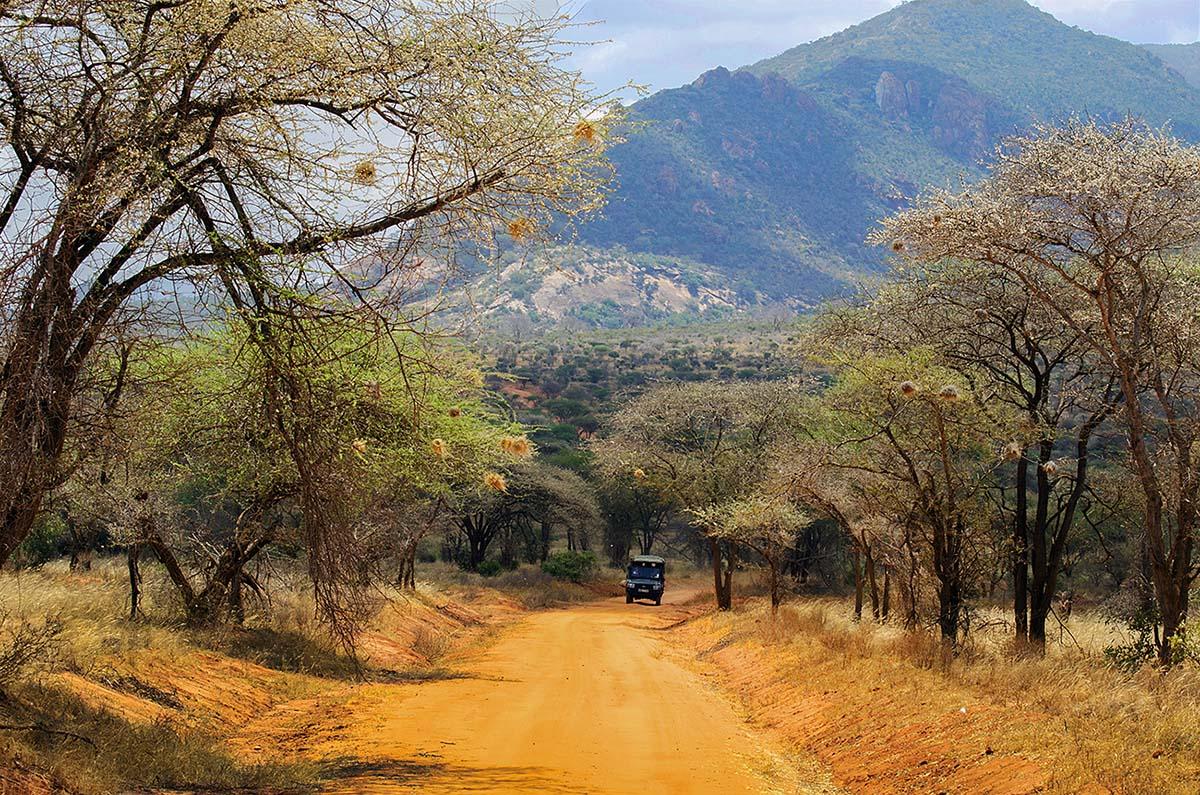 Кения, Африка, машина, дорога, песок, оранжевый, Марина Мудрова