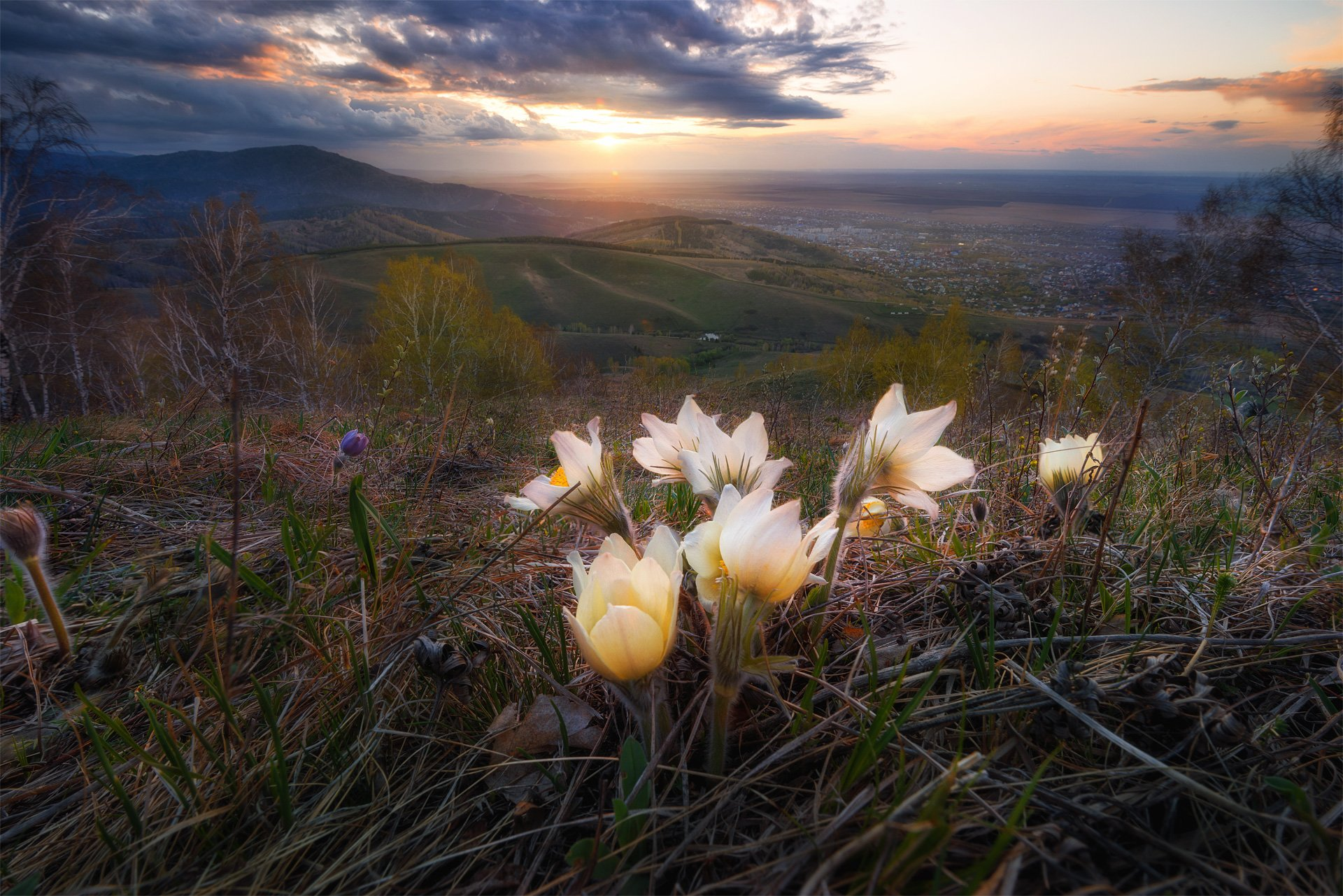 весна, алтай, закат, горы, солнце, долина, трава, небо, тучи, белокуриха, Павел Силиненко