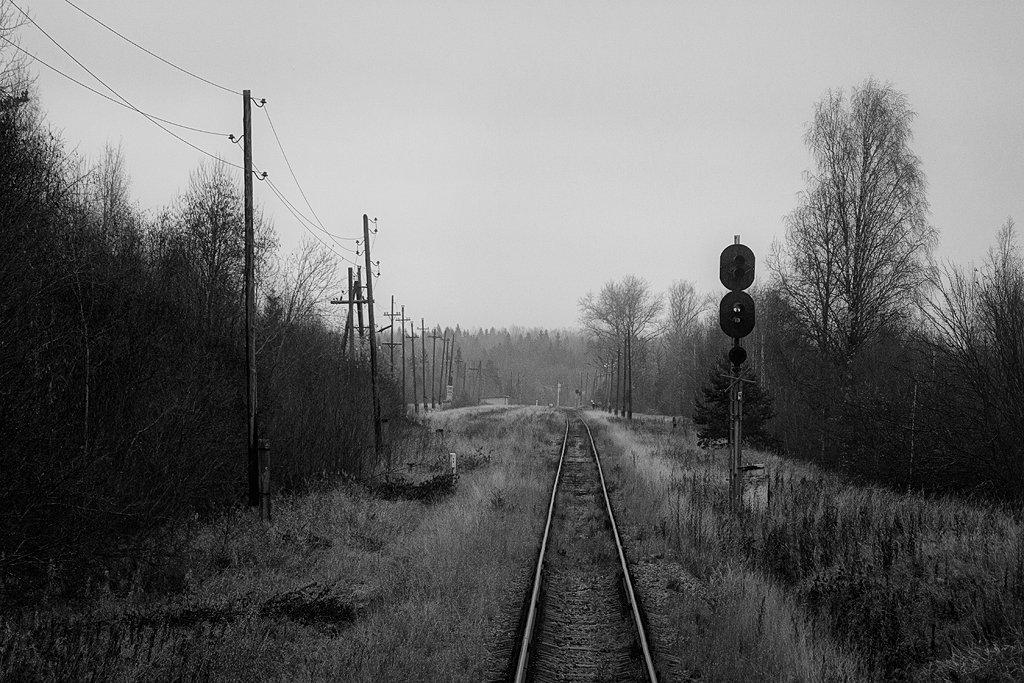 железная дороога, черно-белое, чб, станция, тверская область, деревня, горовастица, Денис Доронин