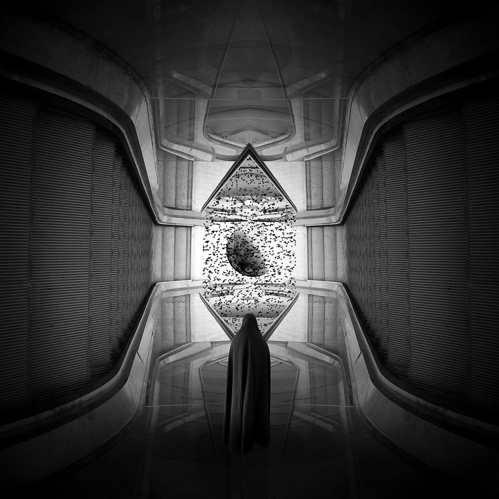 Cretive, edit, fineart, dimension, woman, planet, birds, lines, bnw, , Milad Safabakhsh