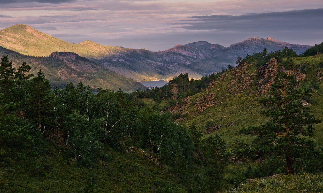 баянаул, горы, рассвет, сосны, Андрей Журавлев