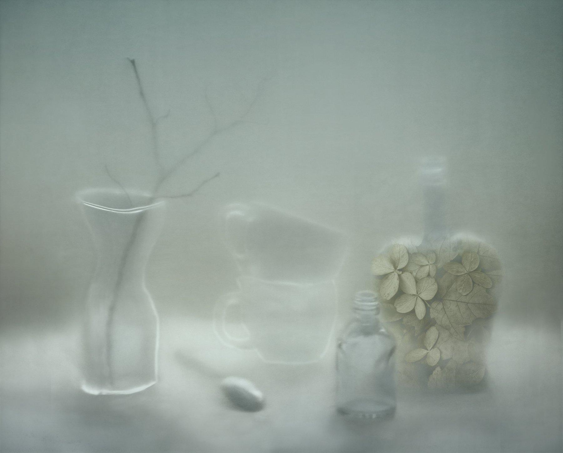 ветка, ваза, чашка, ложка, бутылка, стекло, Елена