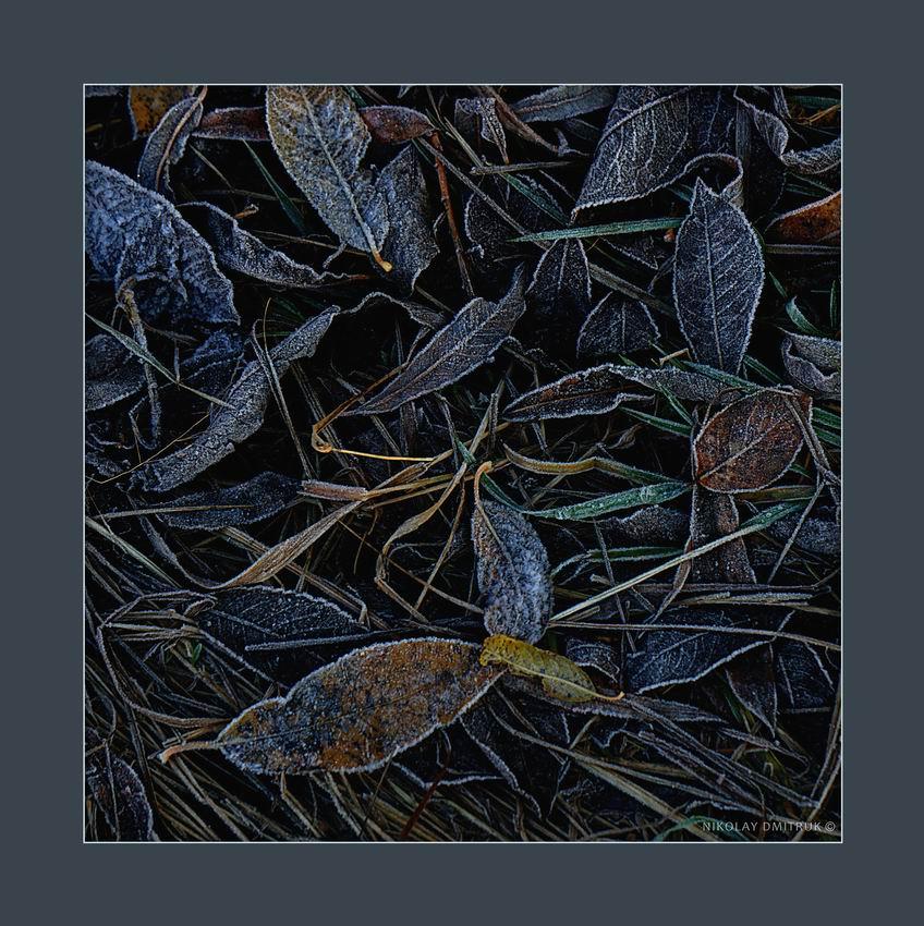 Музыка, Осень, Природа, nick23