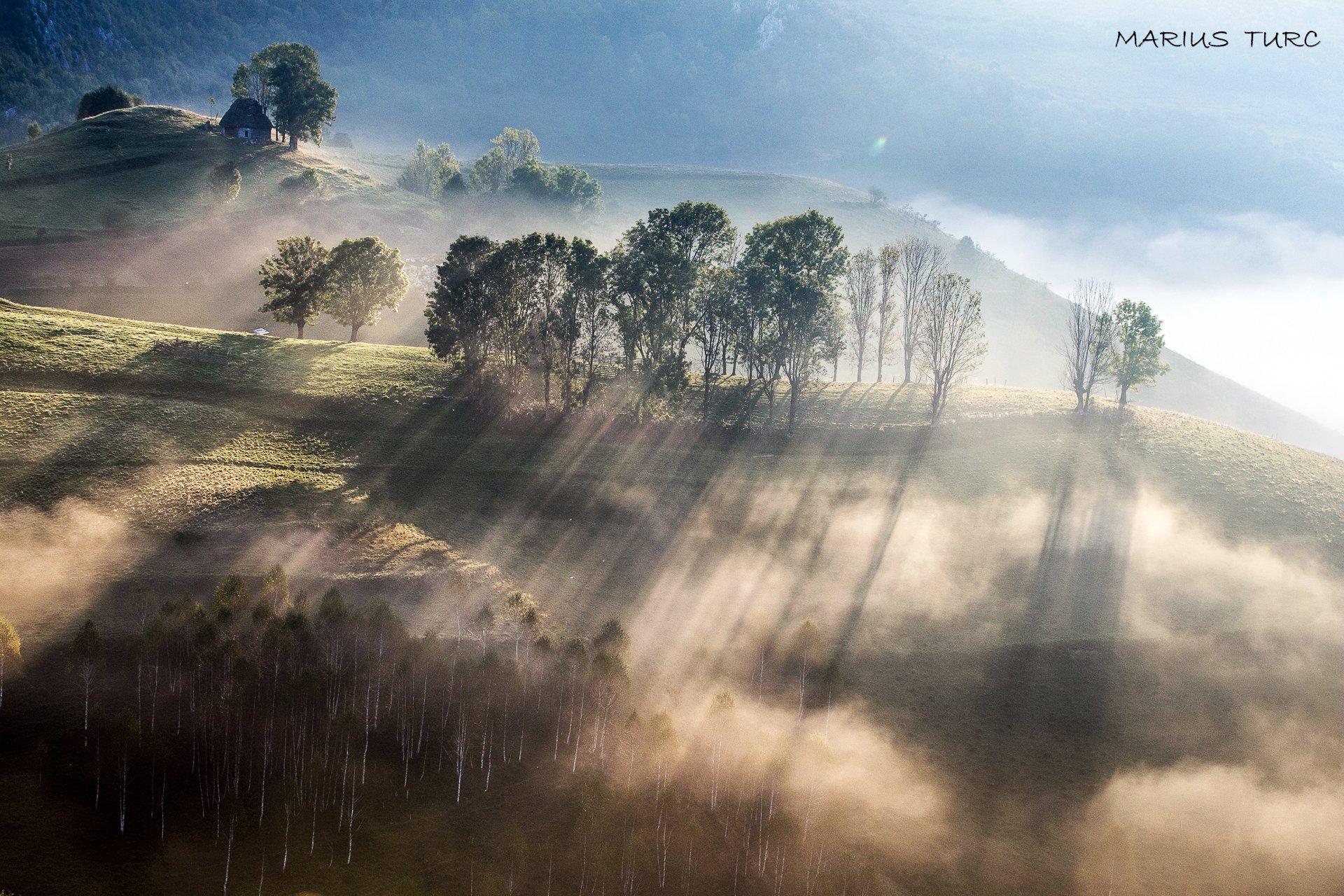 morning,mist,fog,nature,nature,trees,light,hills, Marius Turc