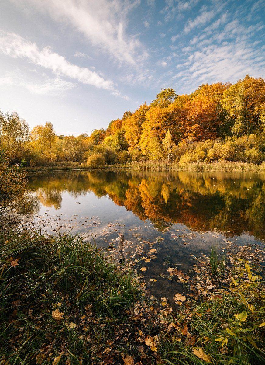 Золотая осень, Озеро, Осень, Анастасия Огородова