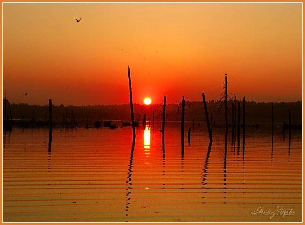 пейзаж,небо,закат,пруд,удмуртия, Андрей,любитель 35photo
