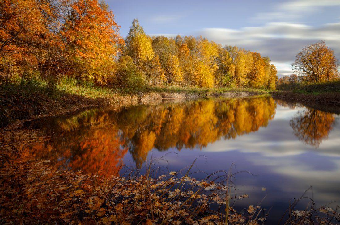 Autumn, Clouds, Colours, Leaves, Reflections, Justinas Kondrotas