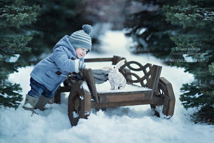 снег , зима, кролик, заяц, мороз, Россия, Наталья Блицен