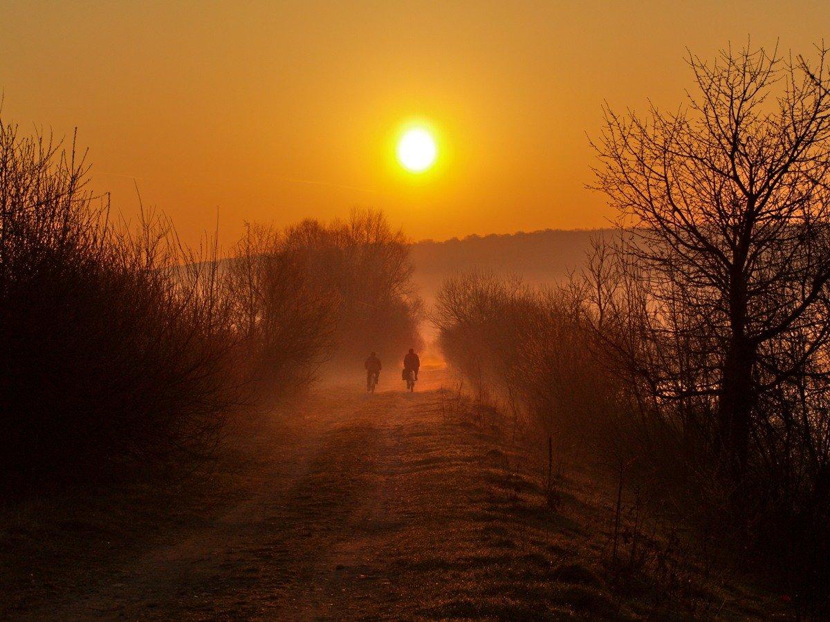 утро, весна, туман, Jaroslav