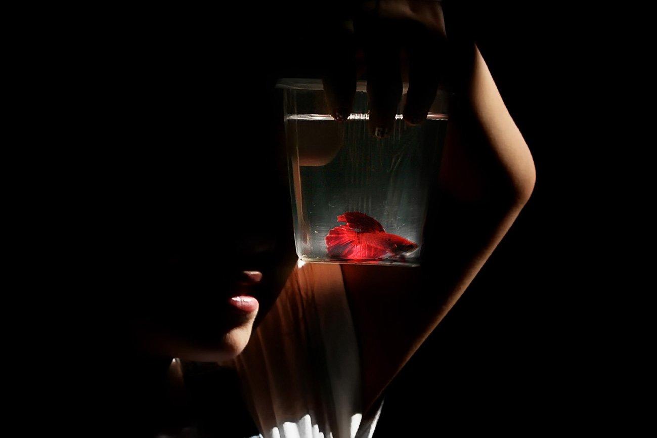 свет, рыбка, человек, Rita Gadar