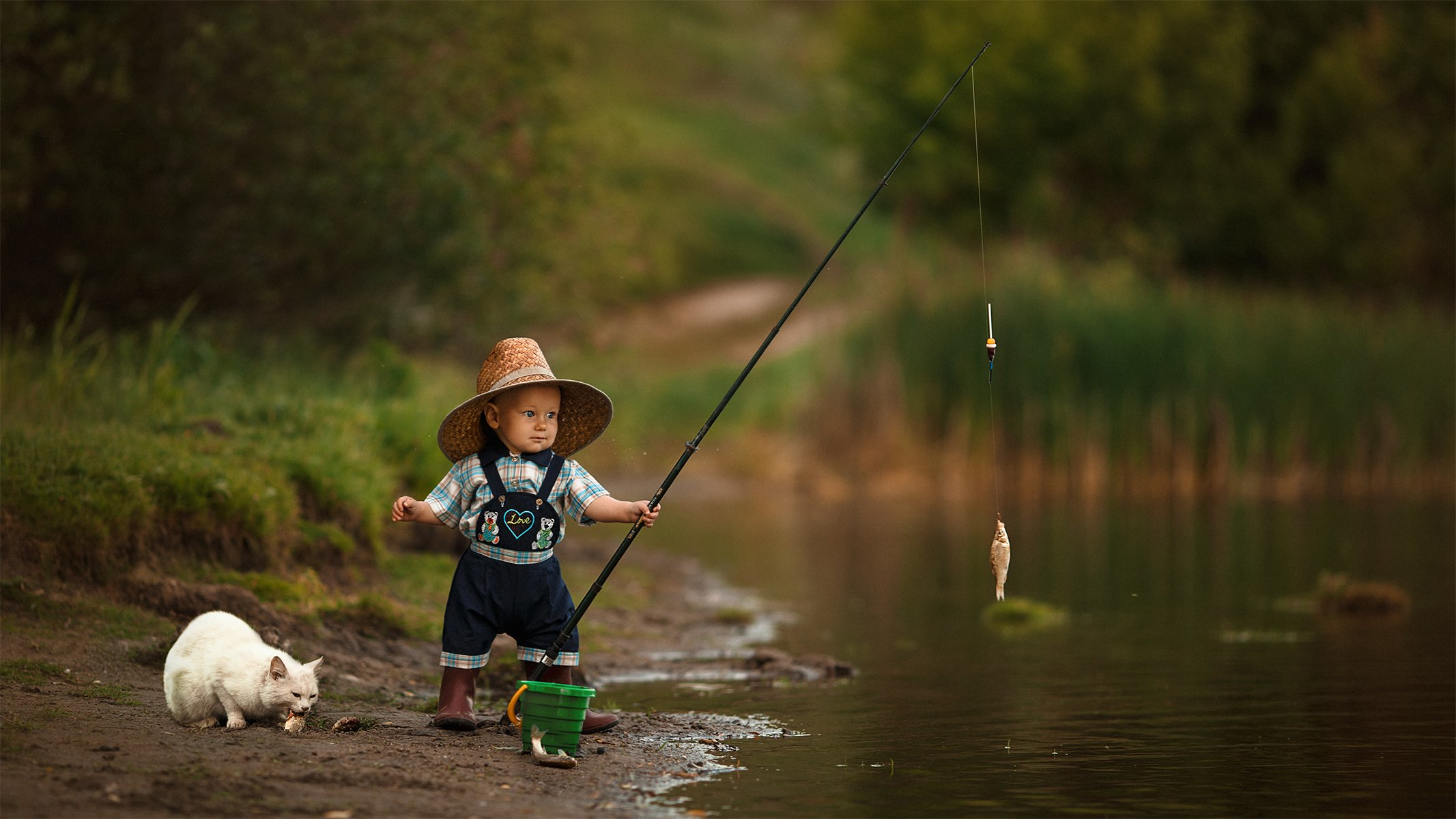 fisher child little boy summer cat ребенок мальчик рыбак лето кот, Александр Чуприна
