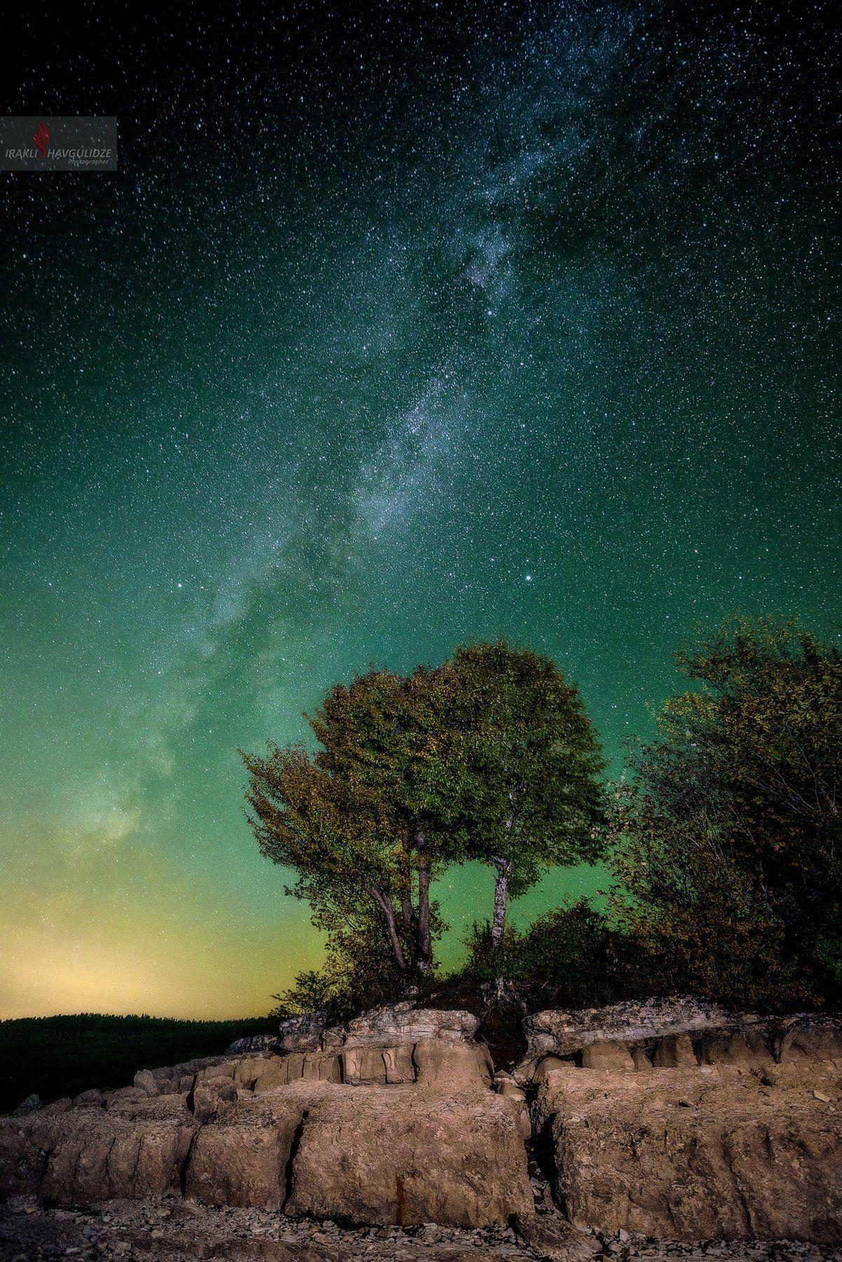 Грузия, Млечныйпуть, Астрофотография, Дерево, Звезды, Осень, Ираклий Шавгулидзе