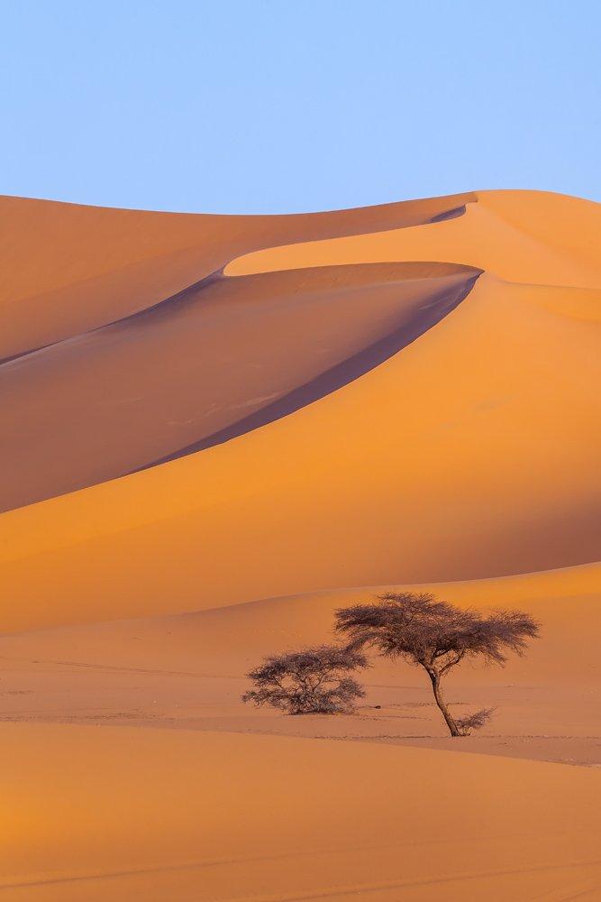 сахара, тадрарт, алжир, африка, пустыня, Арсений Кашкаров