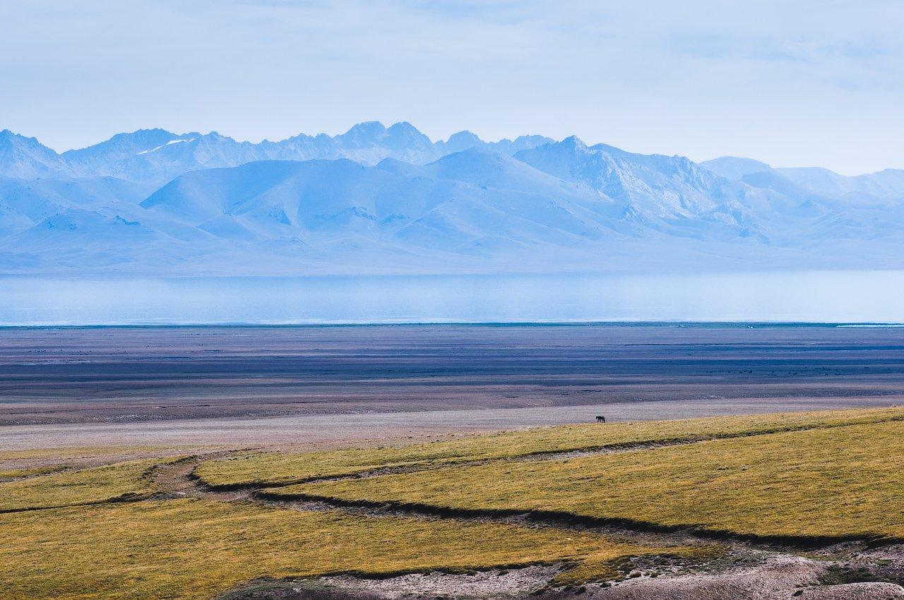 киргизия, горы, озеро, берег, лошадь, kyrgyzstan, mountains, lake, horse, Дмитрий