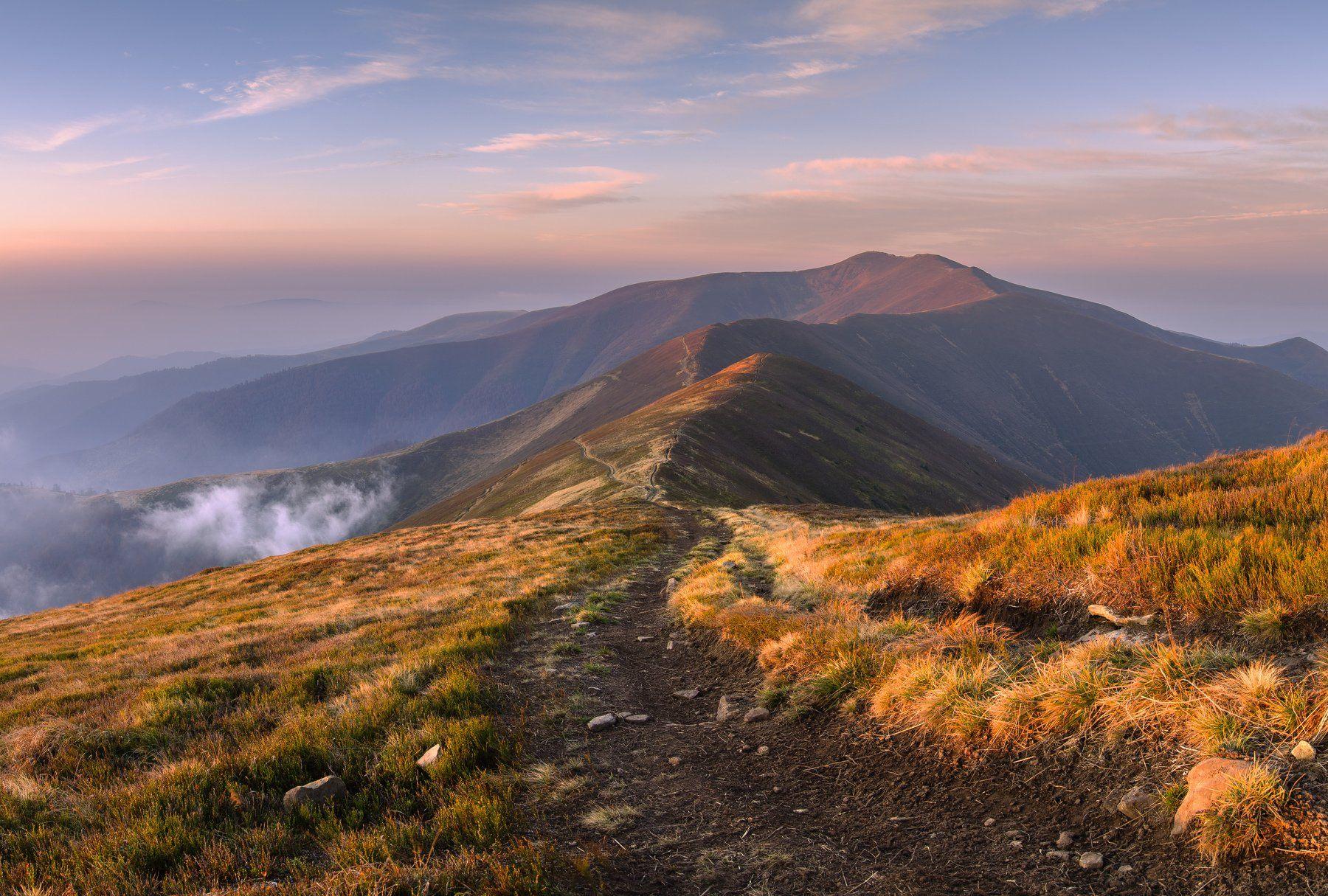 украина, карпаты, горы, боржавский массив, гора стой, гора великий верх, Зинченко Роман