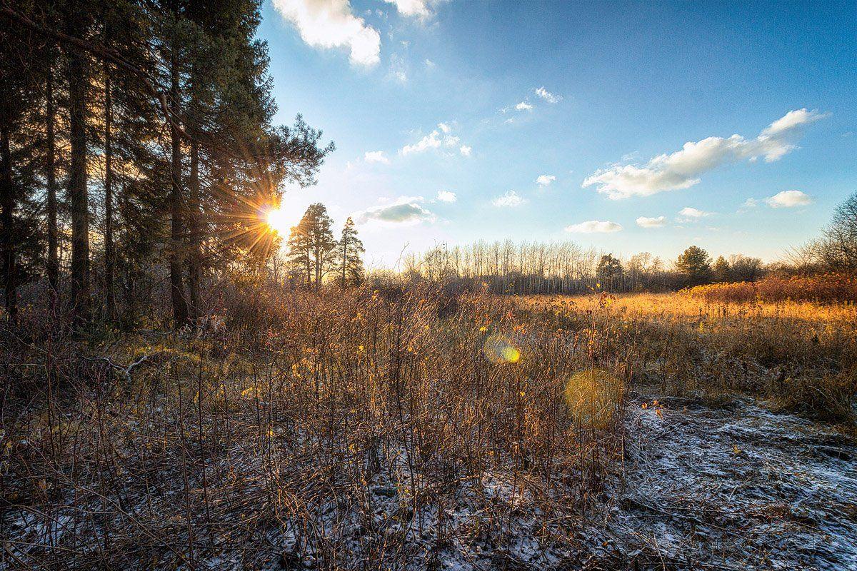 осень, закат, небо, облака, снег, Пушкарев Николай
