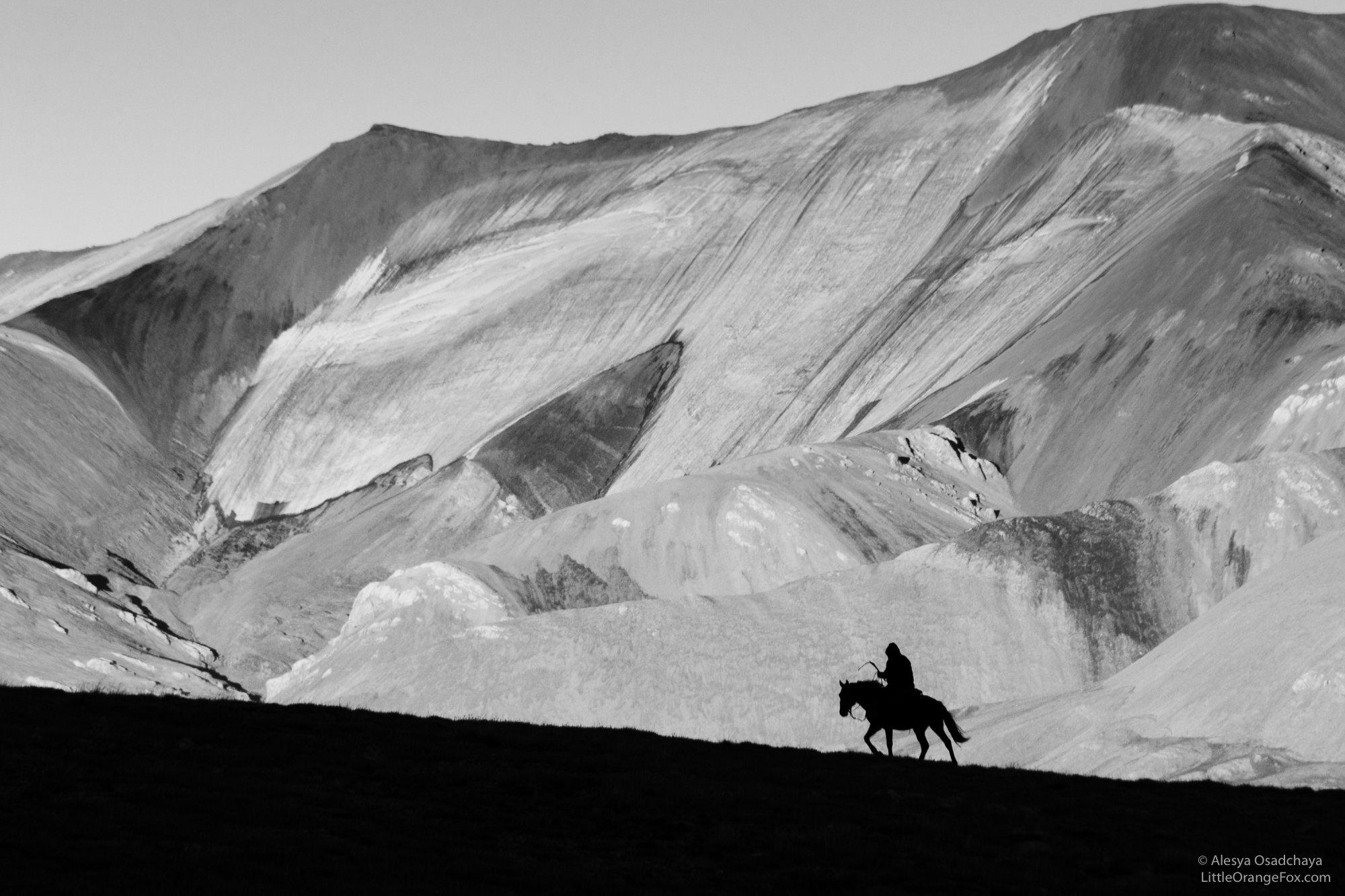 черно-белое, пейзаж, силуэт, горы, чабан, конь, Осадчая Алеся