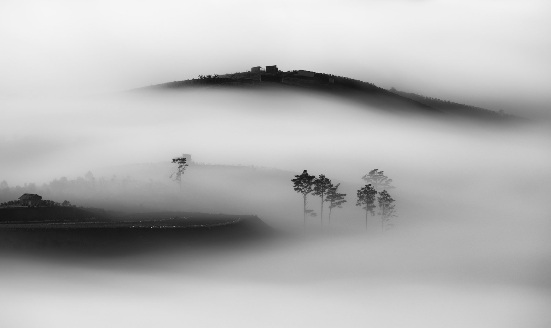 fog, vietnam, dalat, clouds, sunrise, Tuấn Nguyễn