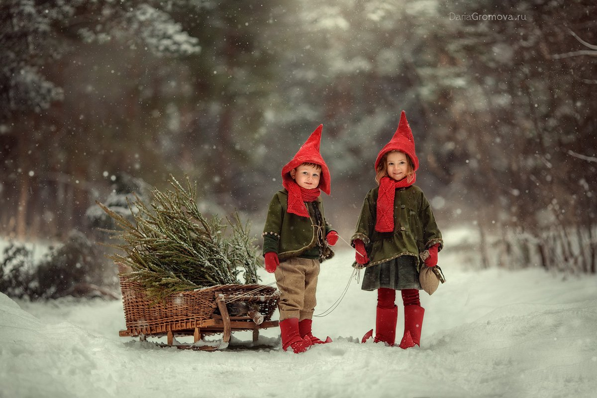 портрет, дарья громова, фотография, фото, фотоарт, фотограф, закат, детский портрет, дети, ребенок, сестры, малыш, девочка, мальчик, детская, фотосессия, фотосъемка, гномы, сани, санки, зима, новый год, Дарья Громова