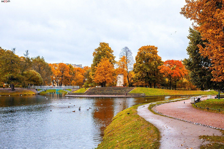 санкт-петербург, осень, парк, сад, деревья, золотая, листва, вода, мост, Сергей