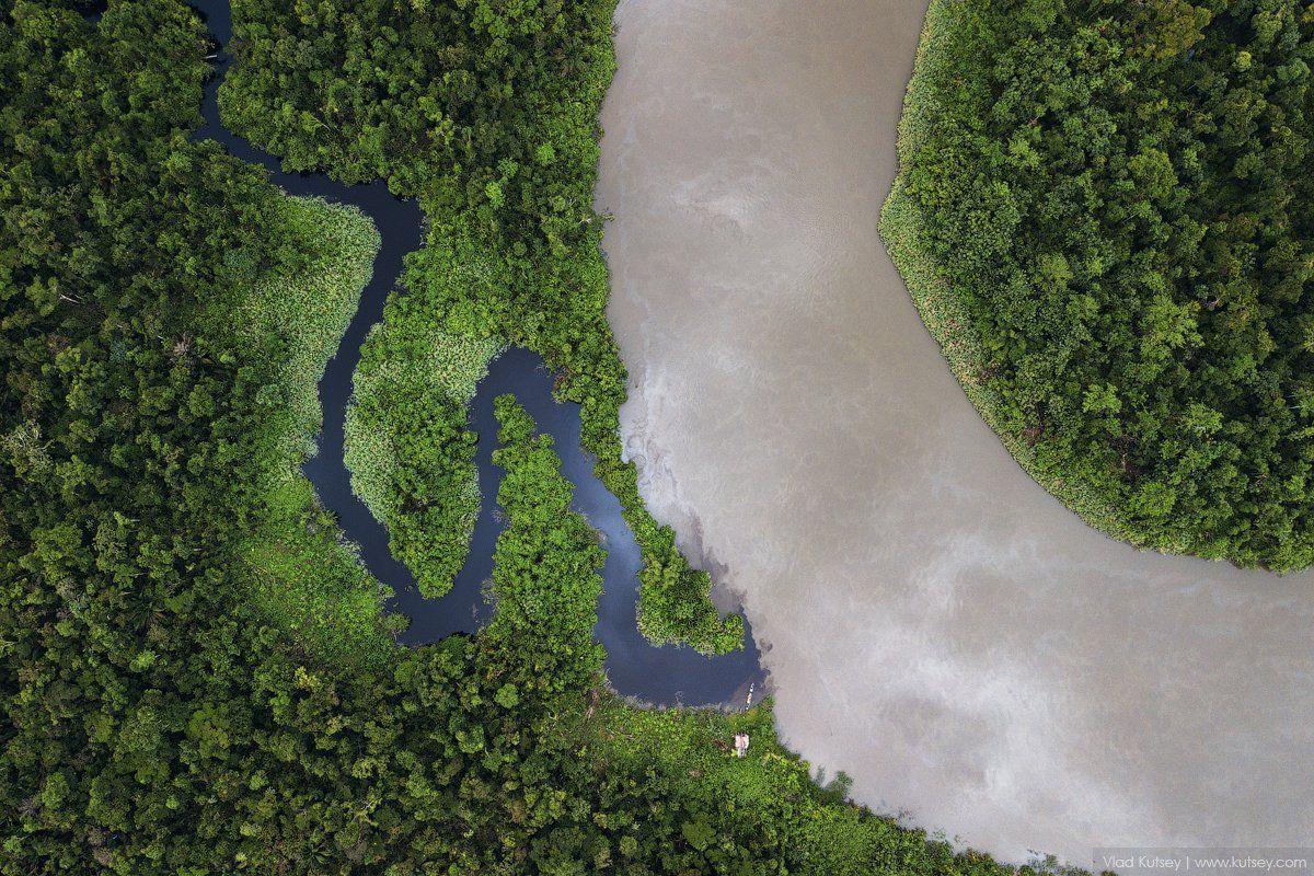 papua, jungle, indonesia, brazza, river, папуа, джунгли, река, индонезия, Владимир Куцый (Vlad Kutsey)