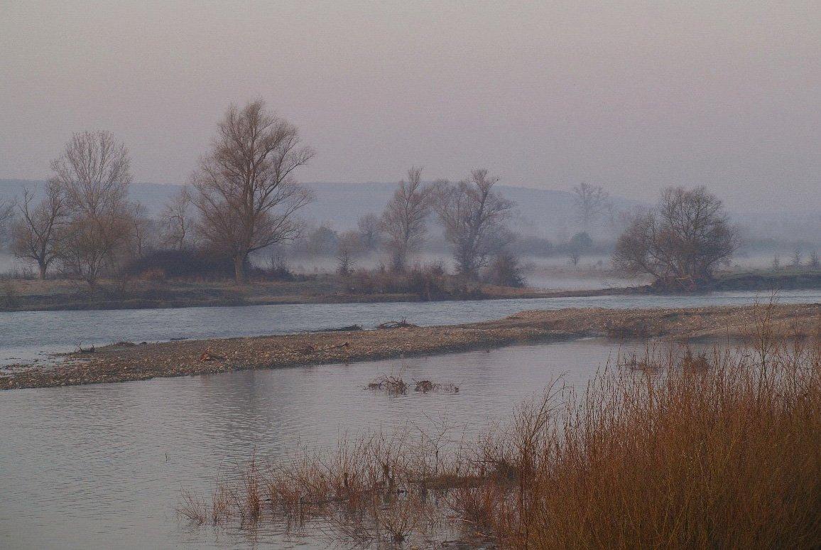 весна, утро, туман, Jaroslav