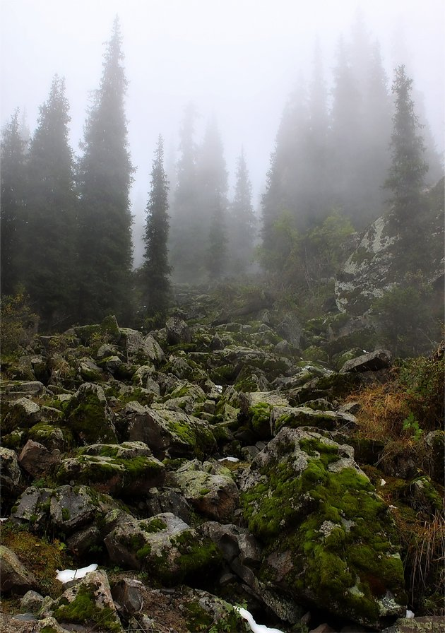 камни,тропа,туман, SkorovS