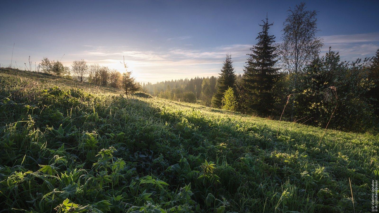 утро, рассвет, иней, поле, холм, солнце, сибирь, пермский край, Владимир Ушаков