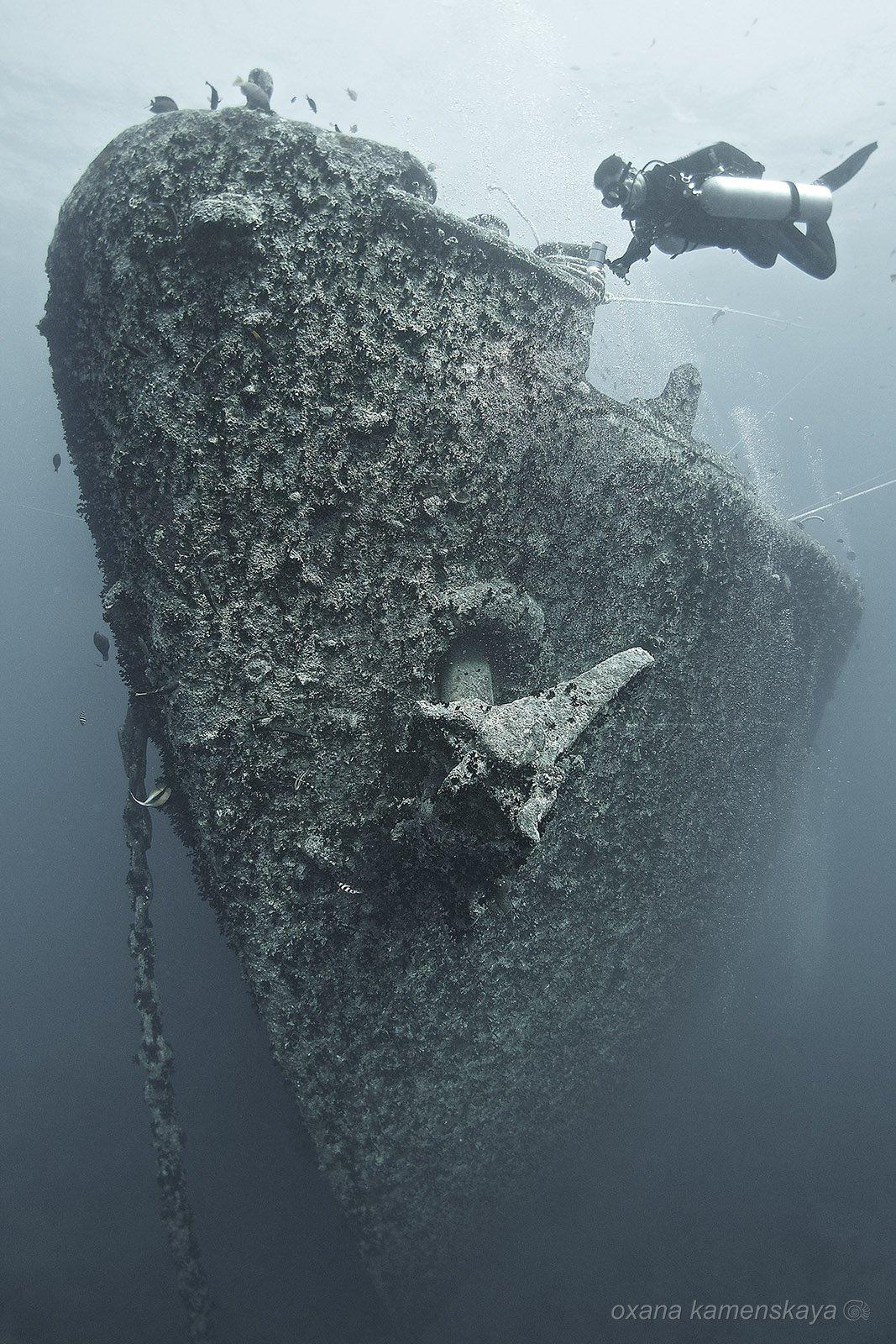 wreck thistlegorm underwater ship bow, Оксана Каменская