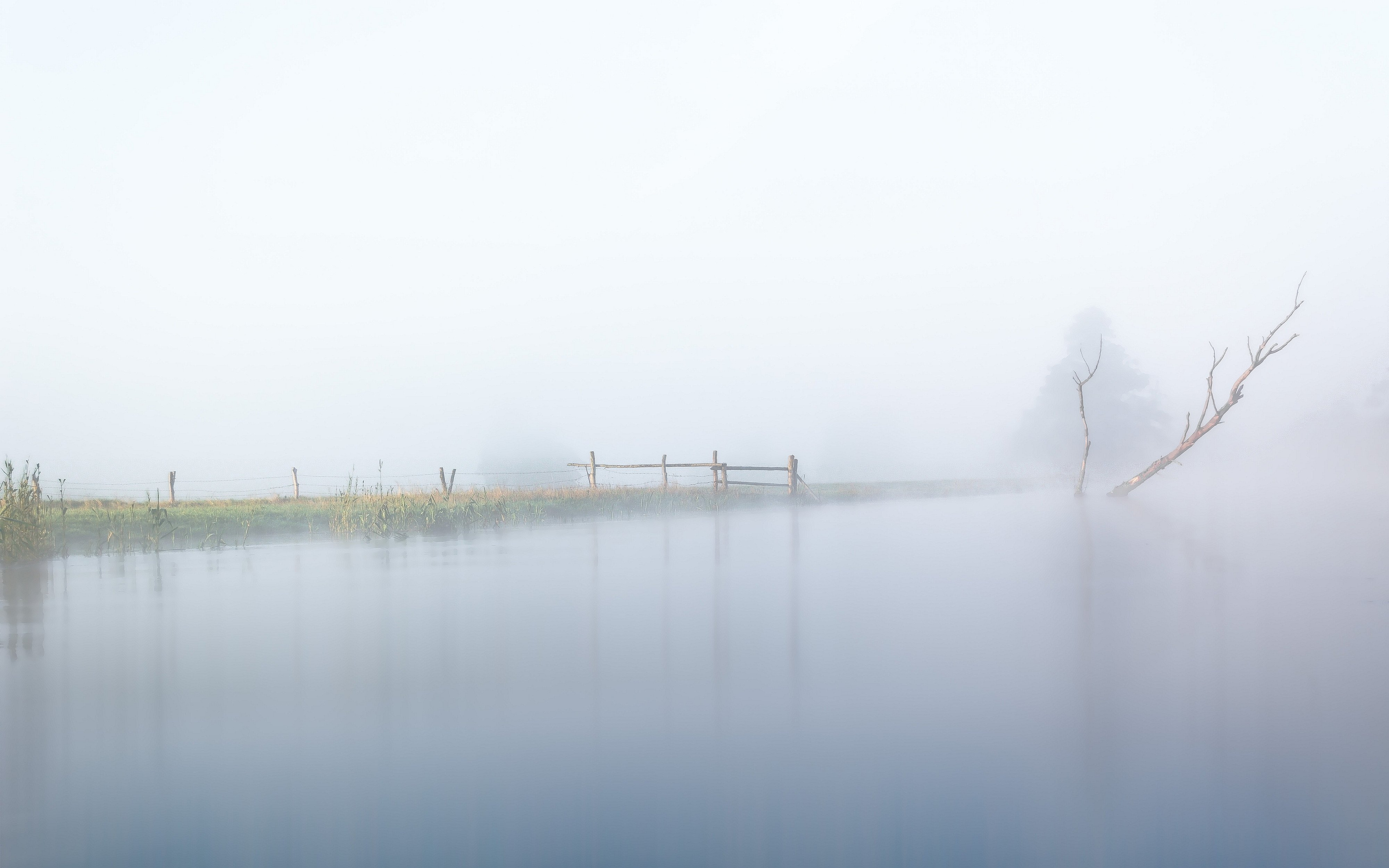 dawn,fog,sky,river,gwda,nature,landscape,tree,pasture,summer,nikon,water,, Krzysztof Tollas