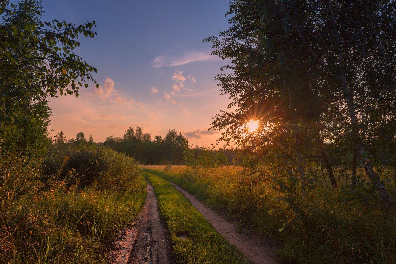 луг, лето, июль, вечер, закат, тепло, тропа, Галанзовская Оксана