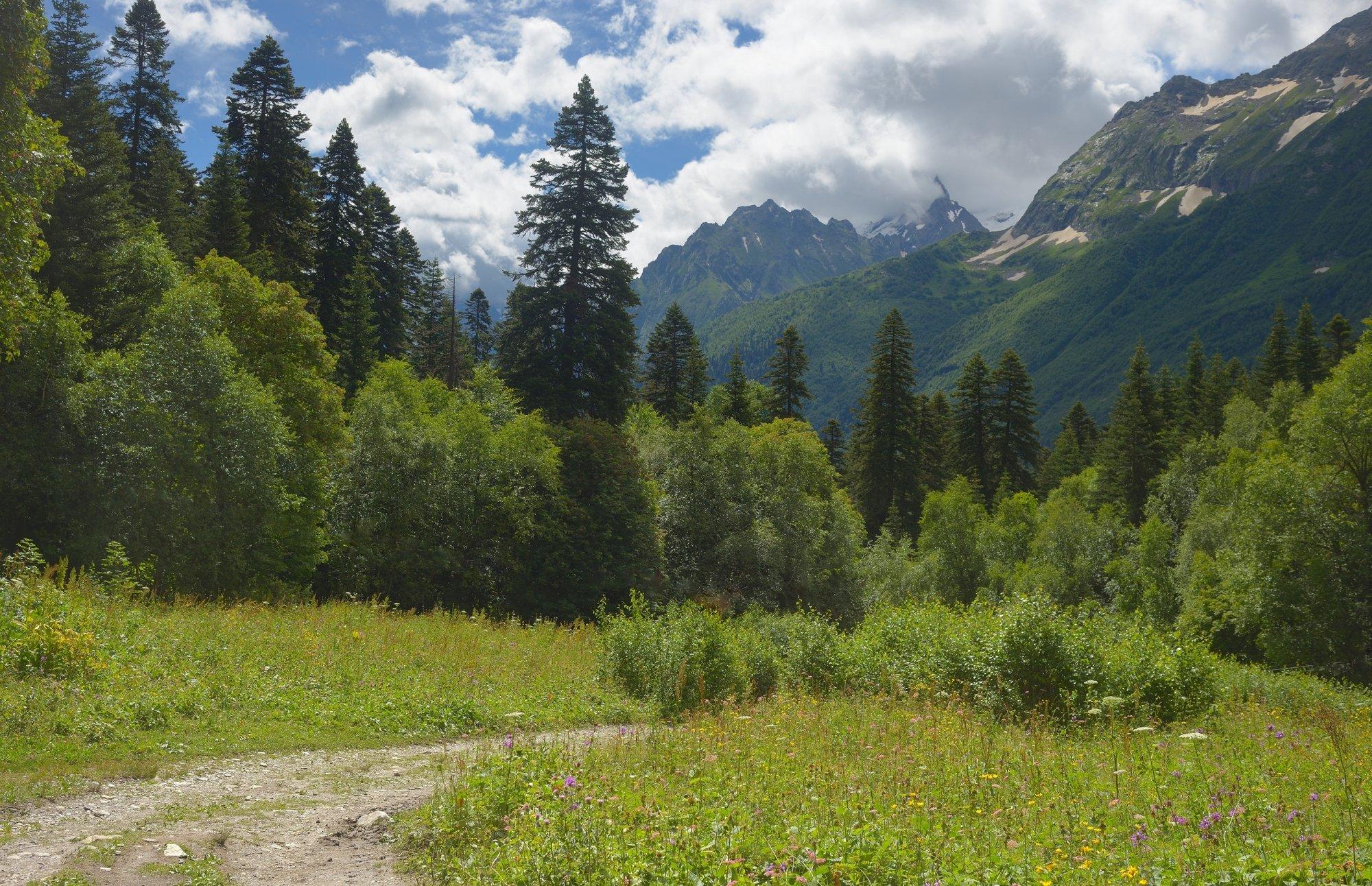 горы лето алибет, Александр Жарников