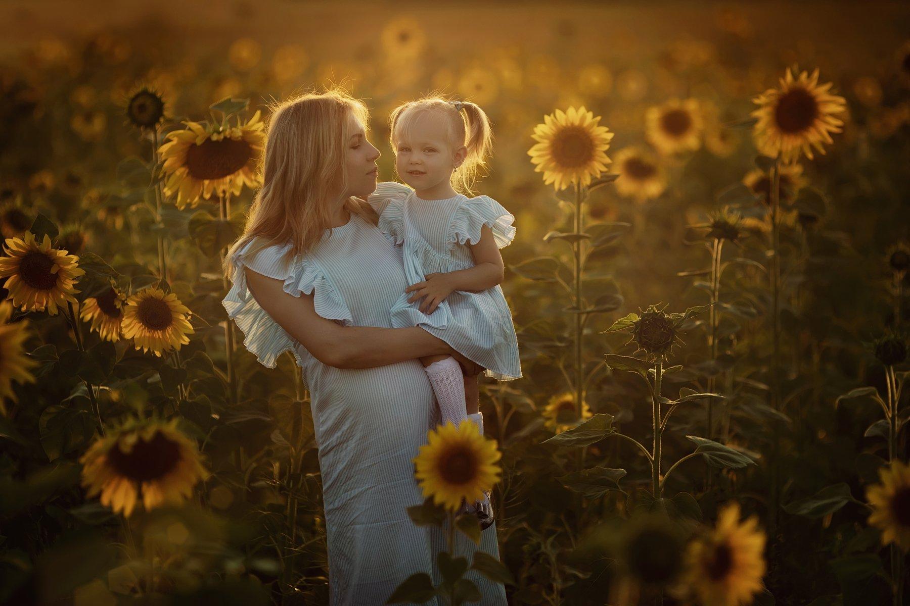 подсолнухи, закат, мама, ребенок, Иванова Александра