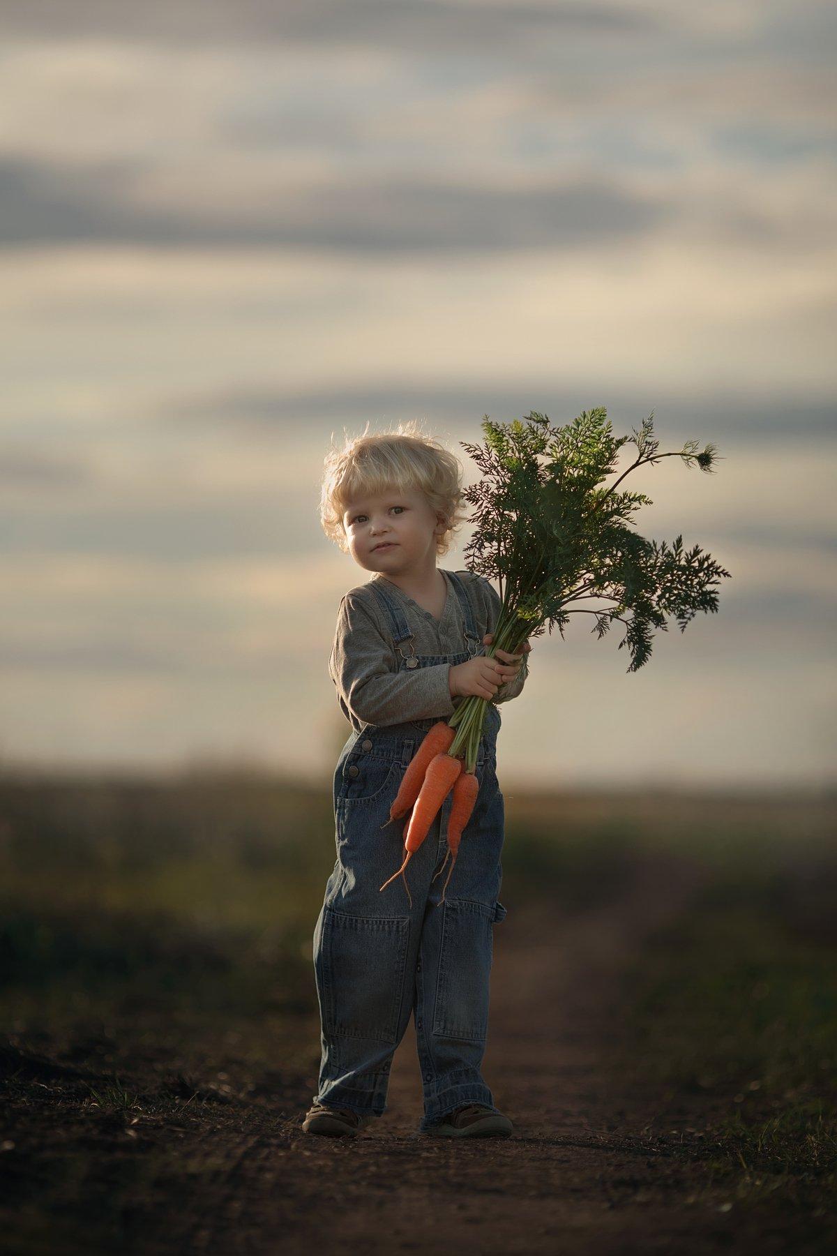 ребенок, поле,закат,деревня, Иванова Александра