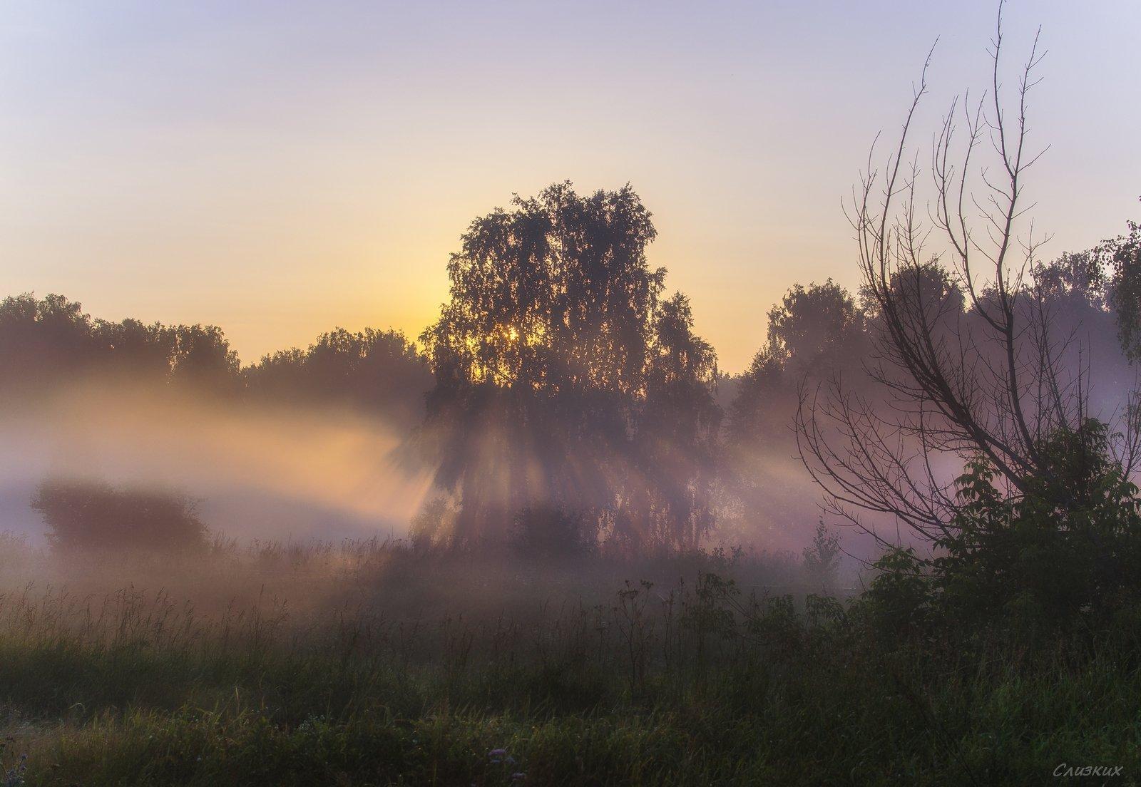 пейзаж,туман,утро,солнце,контражур,август, Инаида