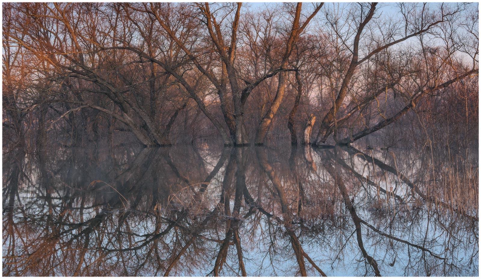 утро, рассвет, разлив, весна, природа, пейзаж, паводок, отражения, Станислав Саламанов