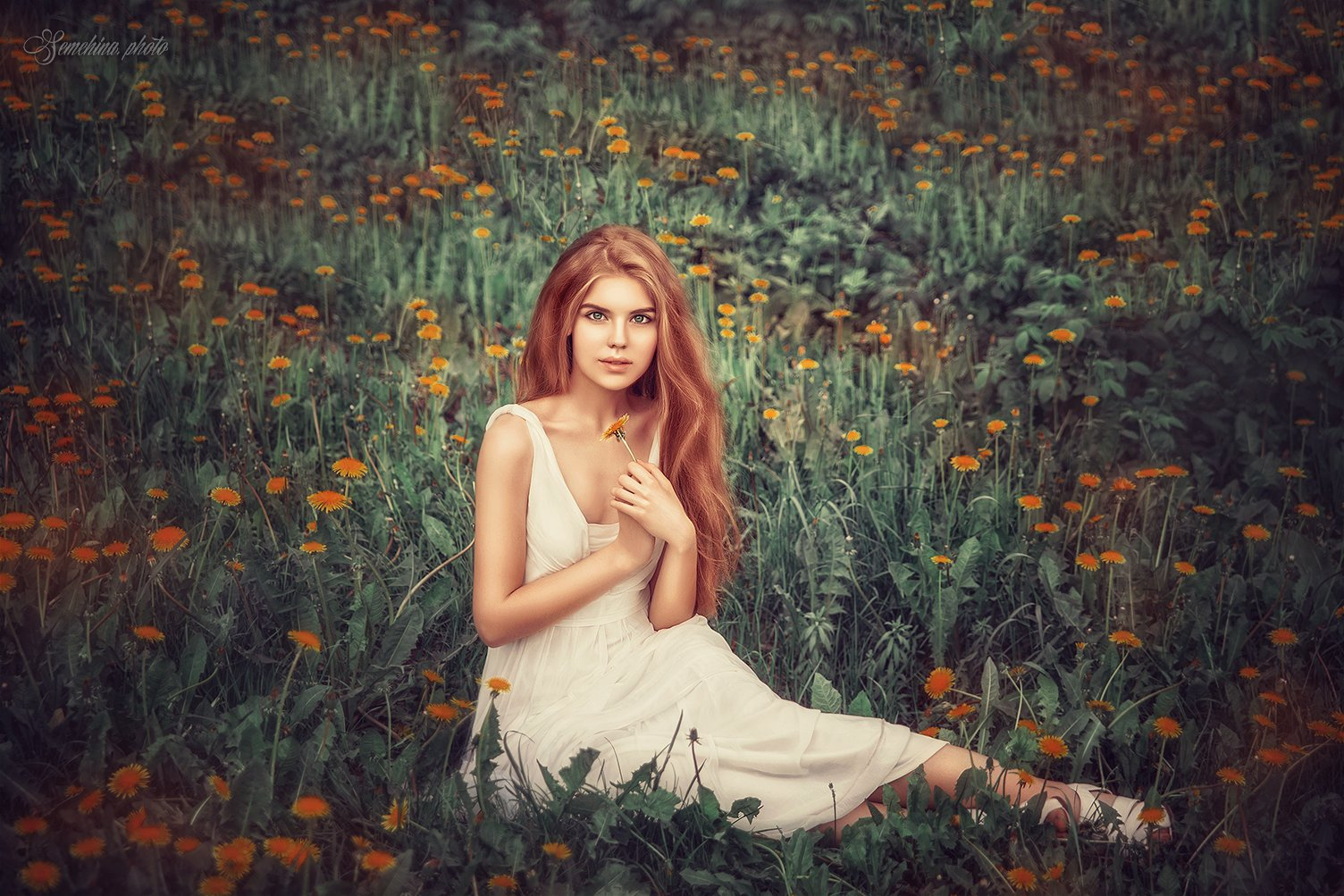 девушка, портрет, одуванчики, лето, поле, girl, portreit, summer, field, flowers, Марина Семёхина