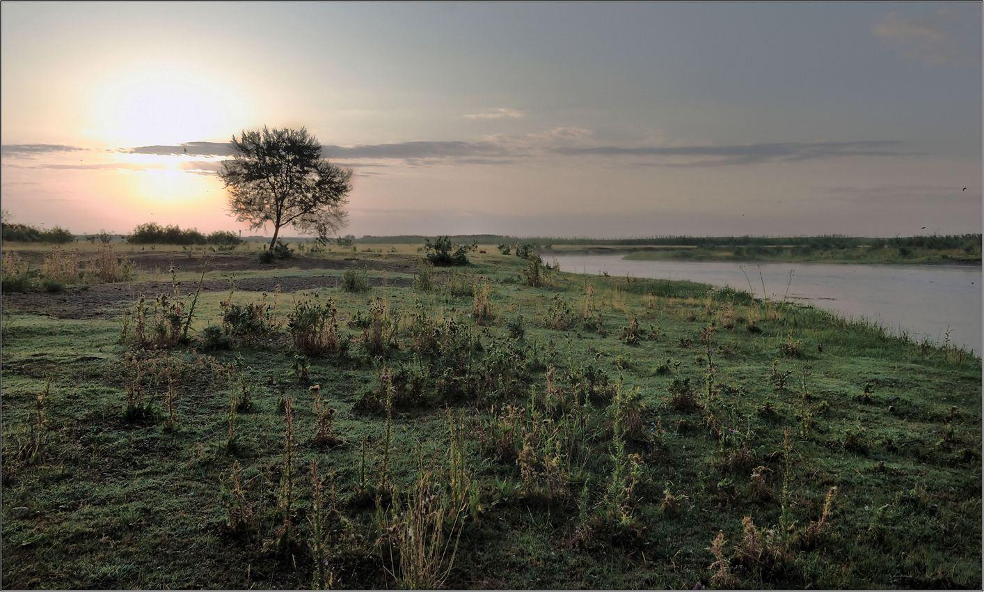 природа, казахстана, юг, Геннадий Меремьянин