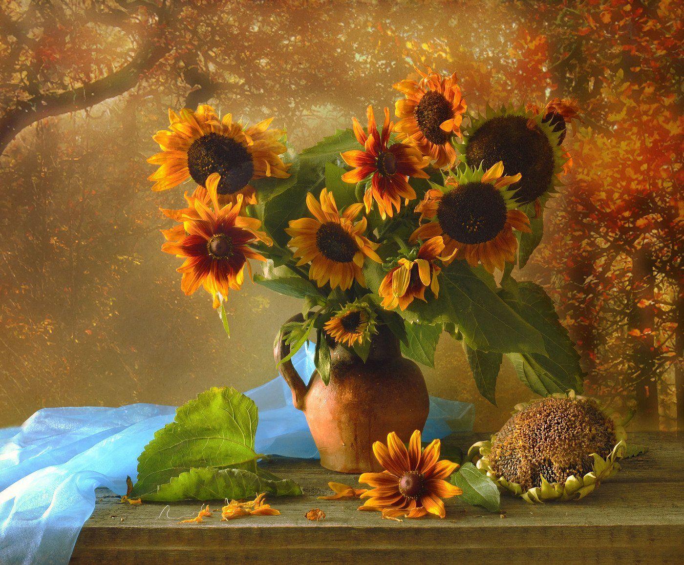 still life,натюрморт, август ,лето ,подсолнухи, фото натюрморт,, Колова Валентина